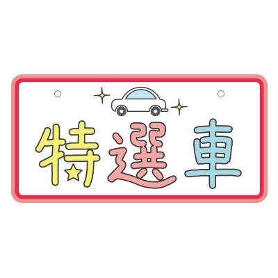 ナンバープレート【4】