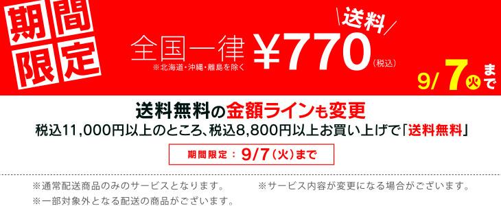 8800円以上で送料無料